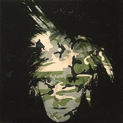 Andy Warhol camo