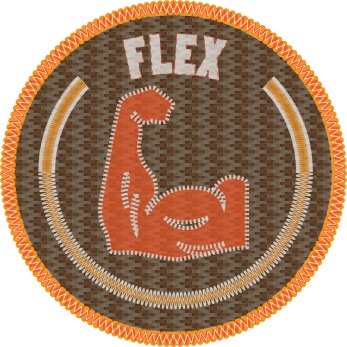 hypebeast-badges-FLEX